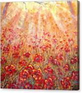 Warm Sun Rays Canvas Print