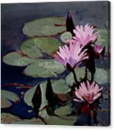Water Trio - Water Lilies Canvas Print