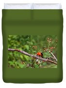 Berry Eating  Scarlet Tanager Duvet Cover