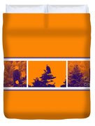 Eagle Scout At Sunset Duvet Cover
