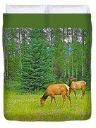 Elk Near Wapiti Campground In Jasper Np-alberta Duvet Cover