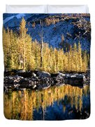 Larch Tree Reflection  Duvet Cover