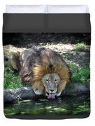Lion Drinking Water Duvet Cover