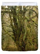 Moss-covered Big Leaf Maple Tree Duvet Cover