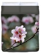 Peach Blossoms I Duvet Cover