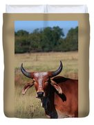 Red Brahma Bull In A Pasture Duvet Cover by Robert D  Brozek