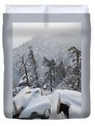 San Jacinto Winter Wilderness Portrait Duvet Cover