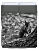 Squirrel In The Park V3 Duvet Cover