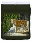 Tiger Tiger Duvet Cover