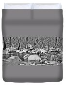 Tohickon Creek Duvet Cover