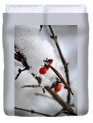 001 Frozen Berries Duvet Cover