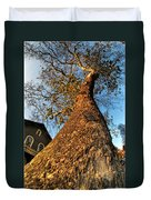 001 Oldest Tree Believed To Be Here In The Q.c. Series Duvet Cover