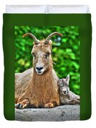 002 Nap Time At The Buffalo Zoo Duvet Cover