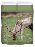01 Fallow Deer Duvet Cover