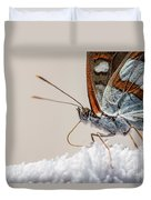 01 Southern White Admiral Butterfly Close Up Duvet Cover