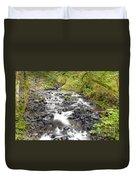 0106 Columbia River Gorge Near Bridal Veil Falls Duvet Cover