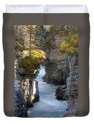 0191 Athabasca Canyon 2 Duvet Cover