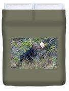 0339 Bull Moose 3 Duvet Cover
