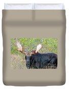 0341 Bull Moose Duvet Cover