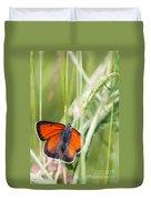 07 Balkan Copper Butterfly Duvet Cover