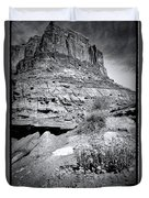 0715 Guardian Of Canyonland Duvet Cover
