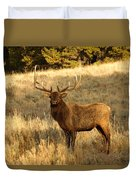 A Bull Elk In Rut Duvet Cover
