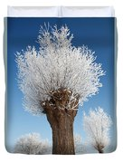 A Frosted Willow On A Very Cold And Bright Winter Day Duvet Cover