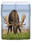 A Large Bull Moose Feeds Near Point Duvet Cover