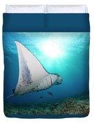 A Reef Manta Ray  Manta Alfredi Duvet Cover