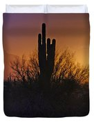 A Sonoran Morning  Duvet Cover