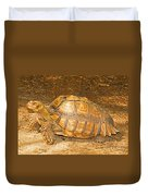 African Spur Thigh Tortoise Duvet Cover