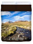 Altiplano In Bolivia Duvet Cover