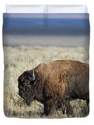 American Bison Duvet Cover