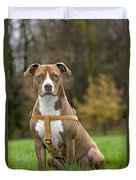 American Staffordshire Terrier Duvet Cover