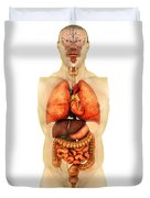 Anatomy Of Human Body Showing Whole Duvet Cover by Stocktrek Images