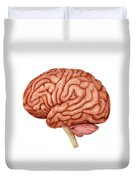 Anatomy Of Human Brain, Side View Duvet Cover