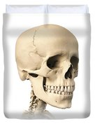 Anatomy Of Human Skull, Side View Duvet Cover