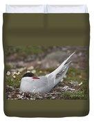 Arctic Tern In Its Nest Duvet Cover