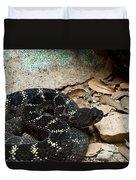 Arizona Black Rattlesnake Duvet Cover
