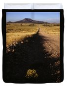 Arizona Strip Duvet Cover