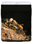 Army Ant Carrying Cricket La Selva Duvet Cover