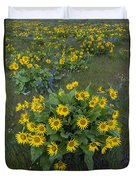 Arrowleaf Balsamroot And Lupine Duvet Cover