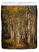 Aspen Forest In Fall Duvet Cover
