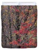 Autumn's Palette Duvet Cover