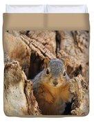Baby Fox Squirrel Duvet Cover