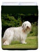 Bearded Collie Dog Duvet Cover