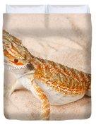Bearded Dragon Pogona Sp. On Sand Duvet Cover