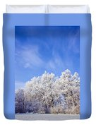 Beautiful Winter Landscape Duvet Cover