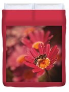 Bee On A Pink Daisy Duvet Cover