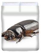 Beetle Aceraius Grandis Duvet Cover